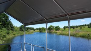 Inside Dock Canopy View